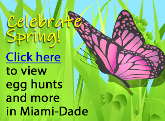Spring Sensations in Miami-Dade