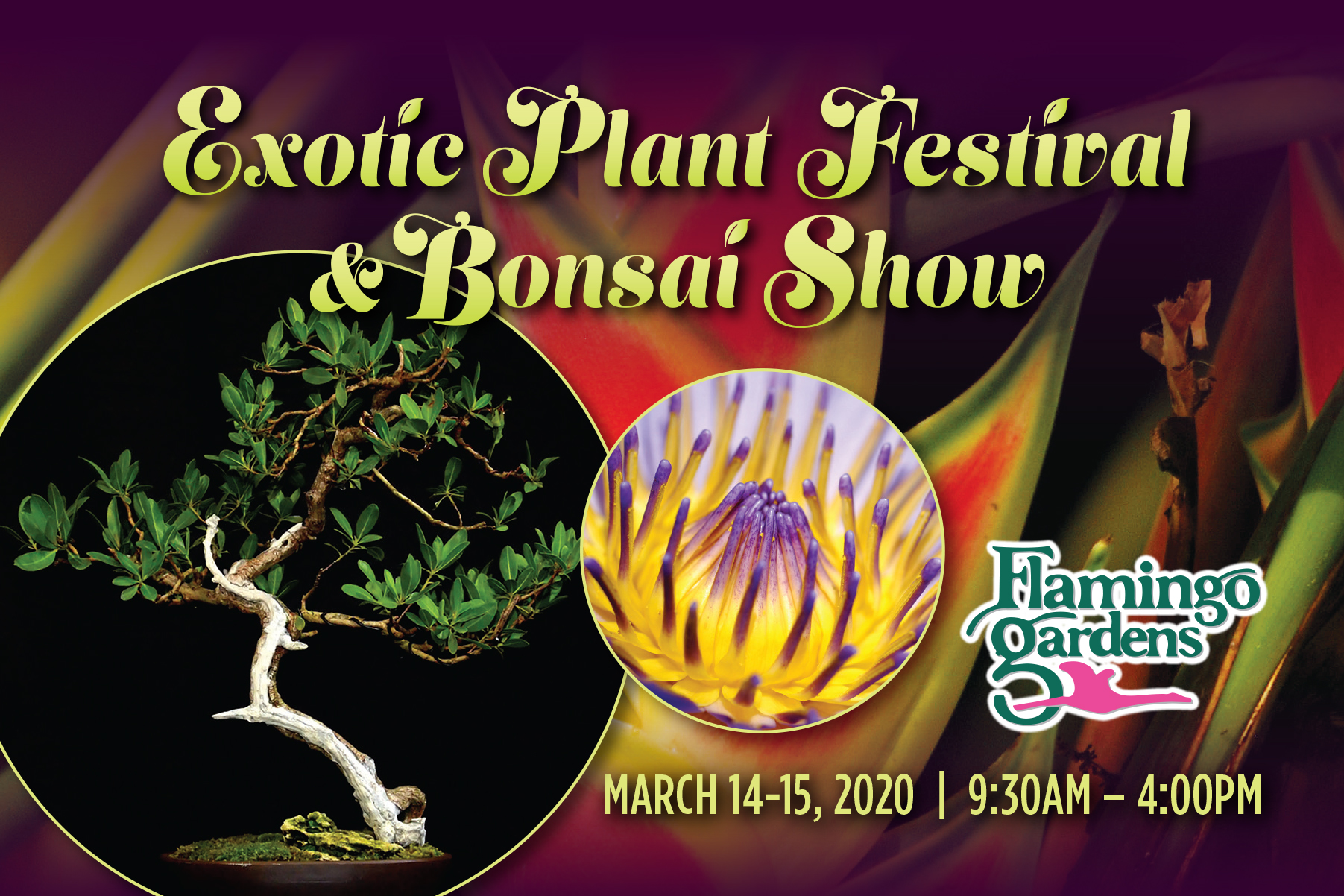 Exotic Plant Festival And Bonsai Show Southfloridafamilylife Com Broward Miami Dade